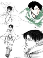 Lots And Lots Of Levi by Riocakes