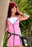 Kairi: Looking Forward by leppa-berry