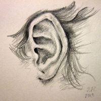 A Study of a Pointed Ear Drawn From Life by Yasmin88