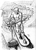 Silver Surfer mows the lawn by rockie-squirrel