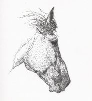 stippled mare by SalaciousSalvation