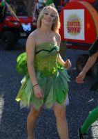 Sydney Royal Easter Show - Green Fairy by richardjwakefield
