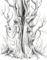 The Tree by nolwen