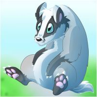 Badger Badger by Kaydolf