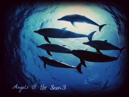Angels of the sea by Stlbluesgirl101