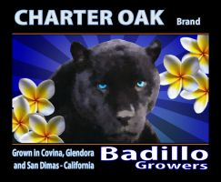 Fruit Crate Label - Badillo by frotton