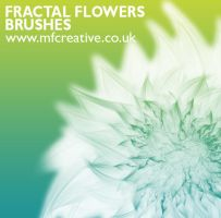 Fractal Flower Brushes by mfcreative
