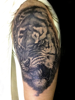 Tigre by ZOOMZOOMMM