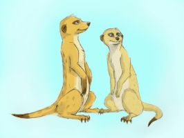 2 meercats by Dream-oN93