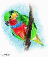 Parrot by AnnaShell