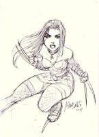 x-23 quick sketch by gammaknight