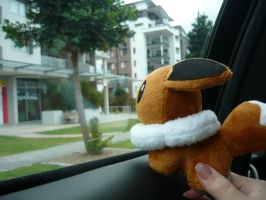 Eevee taking a drive by SunnyPopFeline