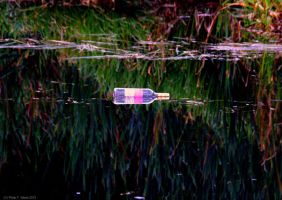 Bottle Floating In Reflections by PhilipWebb
