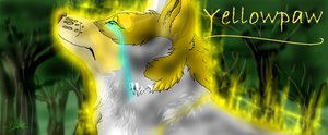 Yellowpaw~ Redrawn by silver-moonwolf