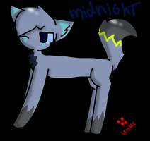 Midnight by xXHopeAndIllusionXx