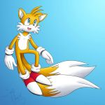 Tails the Fox by SonicPikapal