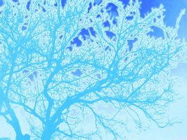 blue tree by dakuness