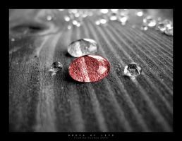 Drops Of Life by pitchblacknight