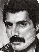 Freddie by BonaScottina