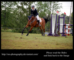 - Show Jumping 10 - :Stock: by SRS-Photography