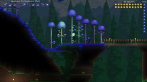 ''Night shot'' : beginning of mushroom biome by Epicsunrise