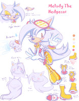 New Character: Melody the Hedgecat by eokoi