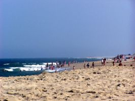 Sandy Hook Beaches by SoCallMeNothing