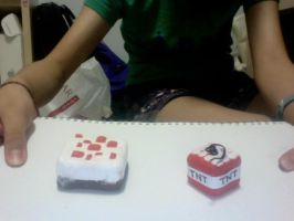Minecraft cake and TNT ^^ by JayEve