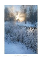 Winter Rays by yenom