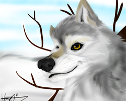 realistic practice- A Winter's Smile by Darkstor1