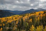 Changing Seasons by HighCountryImages