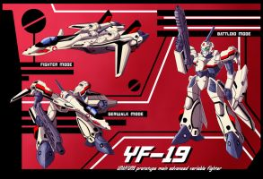 YF-19 Variable Fighter Profile by zeiram0034