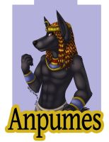 C - RF2012 Badge - Anpumes by Temrin