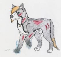 -10 Blood: Wounded by Z-The-Wolf