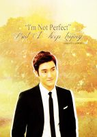 128. I'm not Perfect but I keep trying by Sannie10