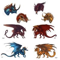 Beetle Dragons concepts by Adalfyre