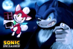 Your next buddy! (Sonic Unleashed) by ukalayla