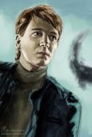 It All Ends - George Weasley by Elucidator