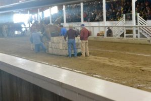 Horse Weight Pulling Competition 7 by Miss-Tbones
