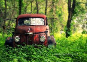 Old truck by MeganMarie162