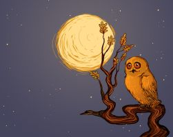 Golden Owl by Enife
