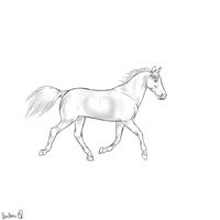 Free Shaded Horse Lineart by xTrippingOnYoux