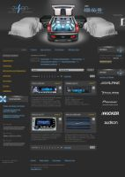 ZIZON.ru Car audio by roboflexx