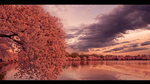 Cherry Lake by RazielMB