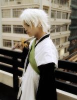 Hitsugaya's Will by SidarthuR