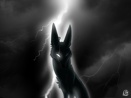 The Queen Of The Storm by MittensTheNoble