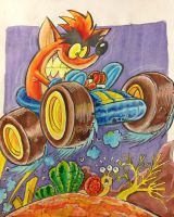 crash team racing by rods3000