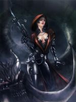 Diablo-3 demonhunter by Night-hawk-Tamps