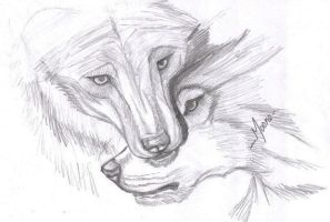 Two Wolfs by JMoona