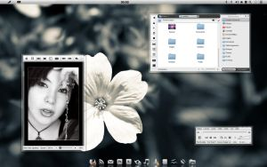 Onyx Kde 4.4 screenshot by washufeng